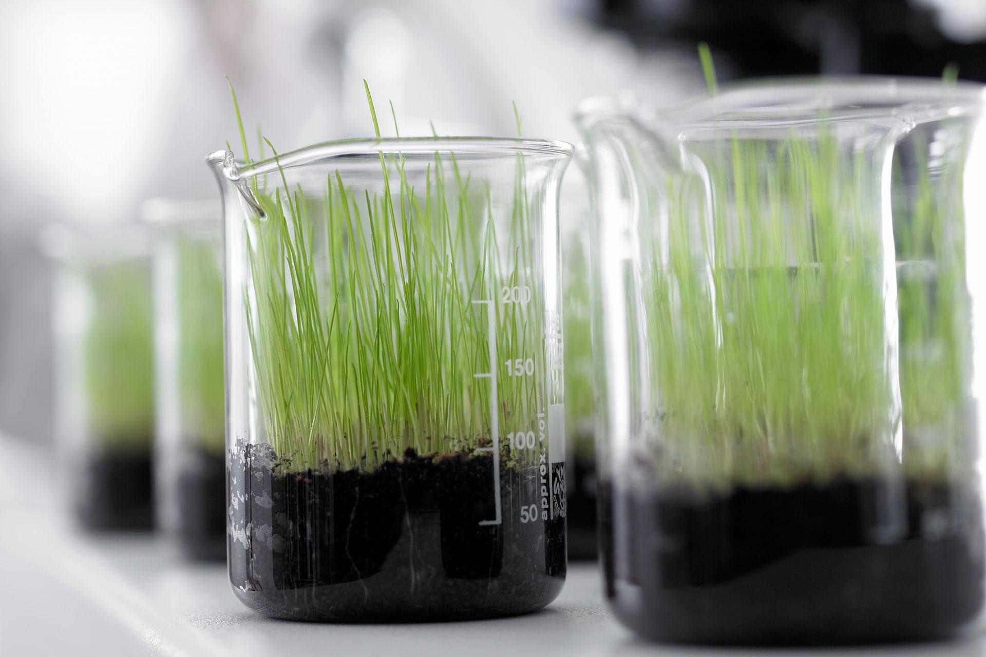 Benefícios de se fazer a análise do solo